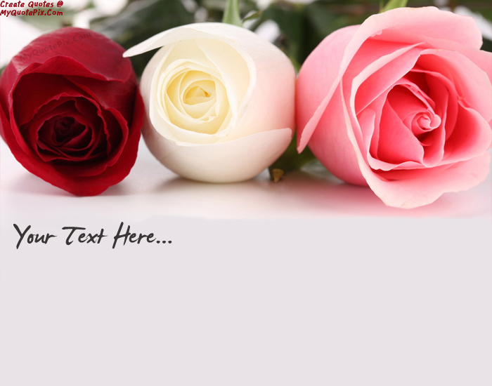 Design Your Own Names Of Beautiful Roses Pink White Red