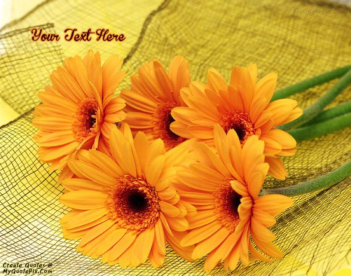 Design your own names of Orange Flower