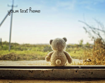 Alone Teddy Bear quote pictures