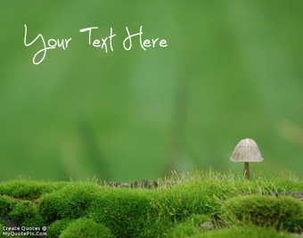 Beautiful Moss Life quote pictures