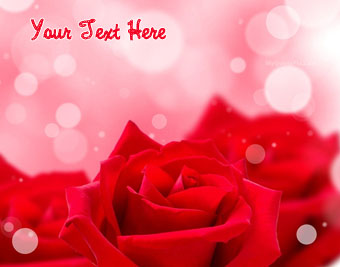 Red Rose Beauty quote pictures