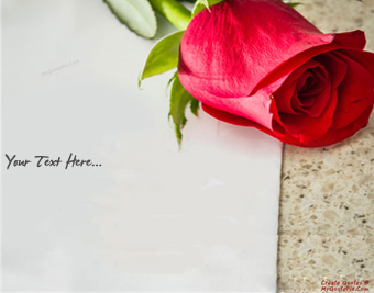 Write Wishes With Red Rose quote pictures