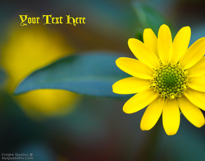 Design Your Own Names Of Yellow Macro Flower